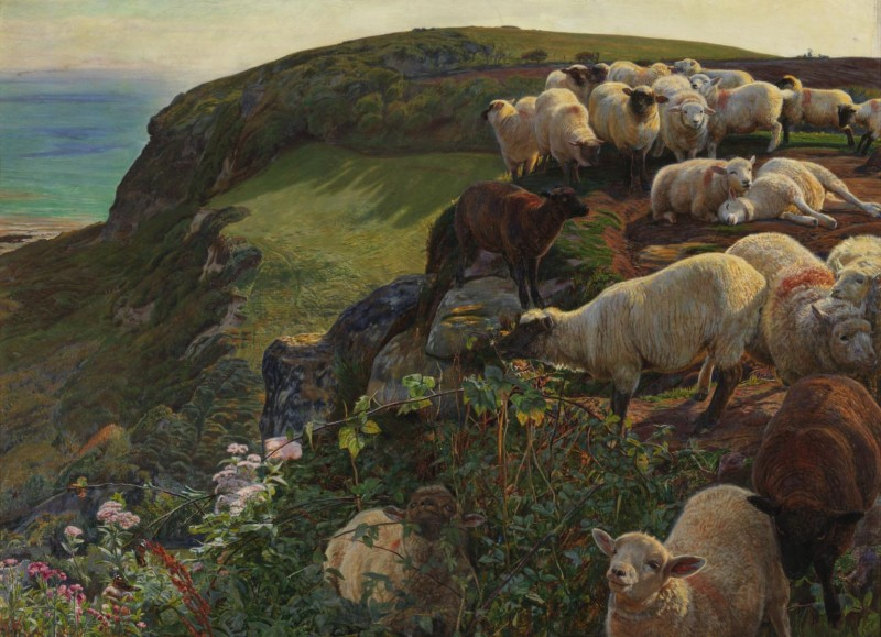 Our English Coasts.jpg
