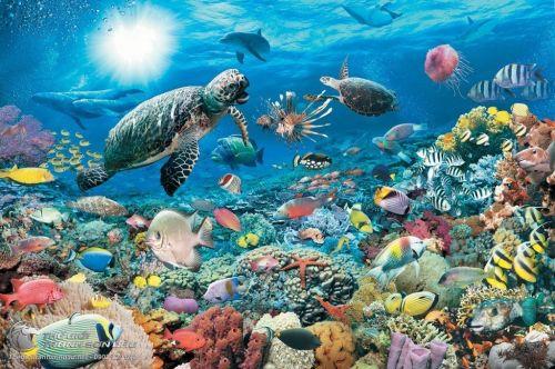 Tranh Phong Cảnh Đại Dương Biển Bao La